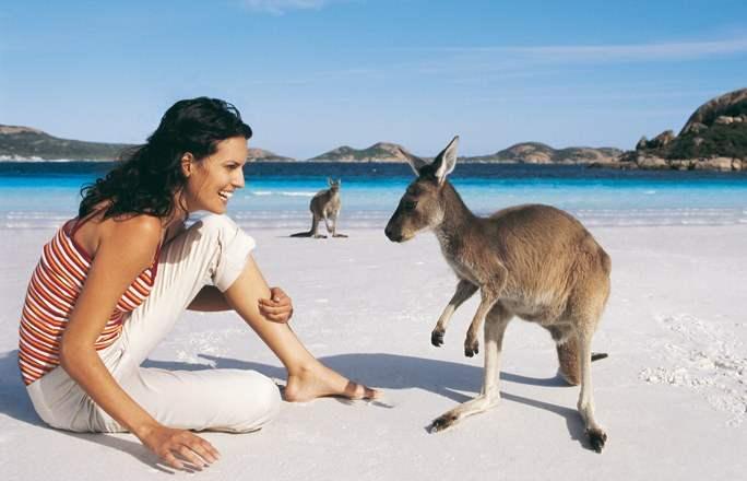 PLAGE-kangaroo-1-103210_L