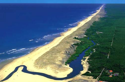 landes-littoral1