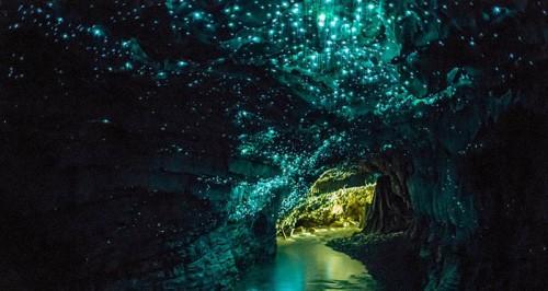 grottes-nouvelle-zelande